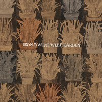 Iron & Wine - Waves of Galveston