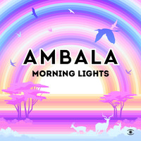 Ambala - Morning Lights