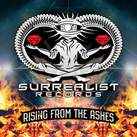 Various Artists - Rising From The Ashes