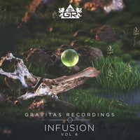 Various Artists - Infusion, Vol. 6