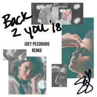 Selena Gomez - Back To You (Joey Pecoraro Remix)