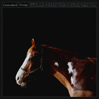Foxing - Gameshark