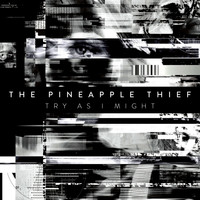 The Pineapple Thief - Try as I Might