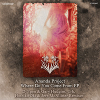 Ananda Project - Where Do You Come From EP