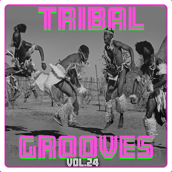 Tribal Grooves, Vol  24