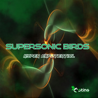 Supersonic Birds - Hyper Exponential