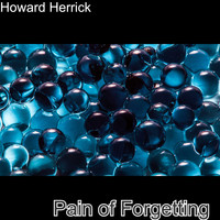 Howard Herrick / - Pain Of Forgetting