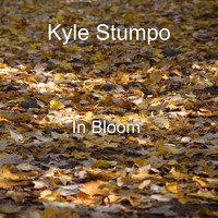 Kyle Stumpo / - In Bloom