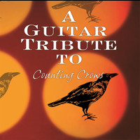 Counting Crows - Counting Crows:tribute To