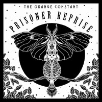 The Orange Constant - Prisoner Reprise