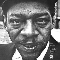 Little Walter - Hate To See You Go