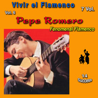 Pepe Romero - Vivir el Flamenco, Vol. 6 (Fenomenal Flamenco) (14 Sucess)