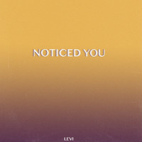 Levi - Noticed You