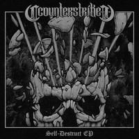 Counterstrike - Self-Destruct EP