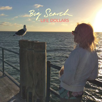 Big Search - Life Dollars