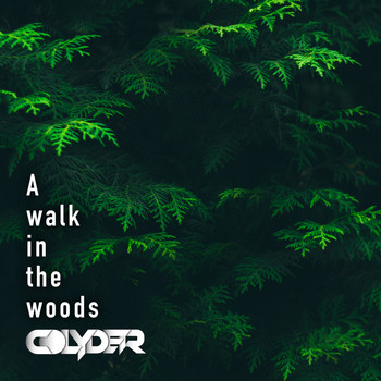 Colyder - A walk in the woods