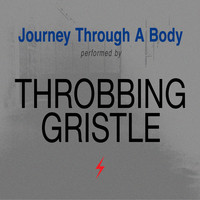 Throbbing Gristle - Journey Through a Body