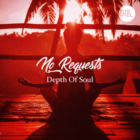 No Requests - Depth of Soul