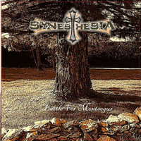 Synesthesia - Battle for Montsegur