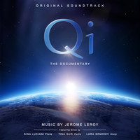Jerome Leroy - Qi - The Documentary (Original Soundtrack)