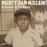 Mighty Sam McClain - Southern Land