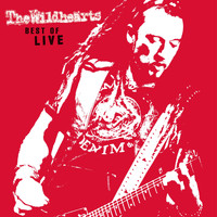 The Wildhearts - Best of Live