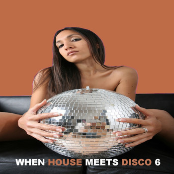 Various Artists - When House Meets Disco, Vol. 6