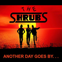 The Shrubs - Another Day Goes By (Explicit)