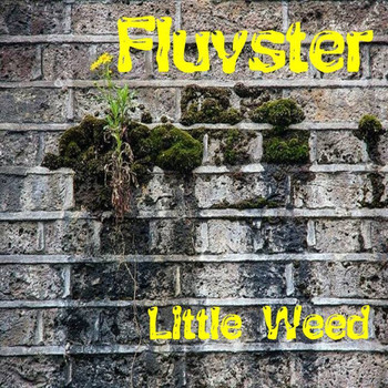 Fluvster - Little Weed
