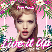 Pink Panda - Live It Up (DJ Edit)
