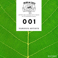 Various Artists - Brain on Couch 001