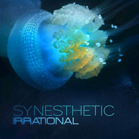 Synesthetic - Irrational
