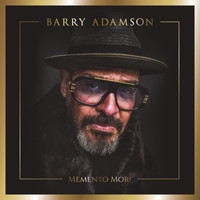 Barry Adamson - The Hummingbird