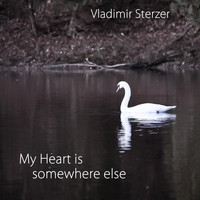 Vladimir Sterzer - My Heart Is Somewhere Else (Symphonic Version)
