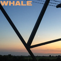 Whale - Thanks for Asking