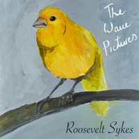 The Wave Pictures - Roosevelt Sykes