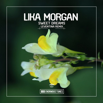 Lika Morgan - Sweet Dreams (Leventina Remixes)