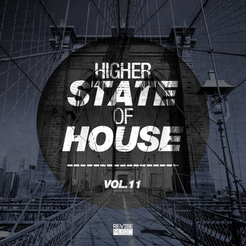 Various Artists - Higher State of House, Vol. 11