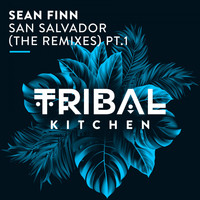 Sean Finn - San Salvador (The Remixes) Pt. 1