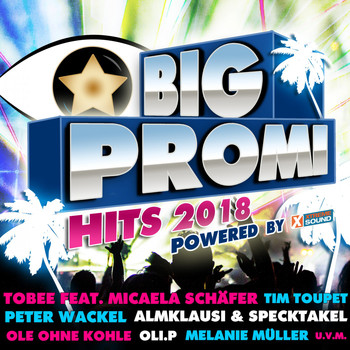 Various Artists - Big Promi Hits 2018 Powered by Xtreme Sound