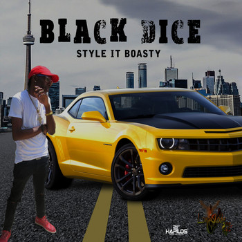 Black Dice - Style It Boasty