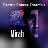 Micah - Electric Cheese Ensemble