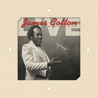 James Cotton - Live at Antone's Nightclub