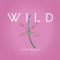 Wild - Just Begun