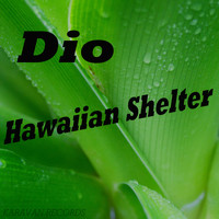 Dio - Hawaiian Shelter