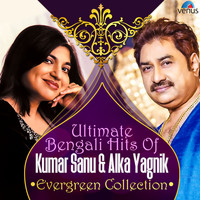 Kumar Sanu, Alka Yagnik - Ultimate Bengali Hits of Kumar Sanu & Alka Yagnik Evergreen Collection