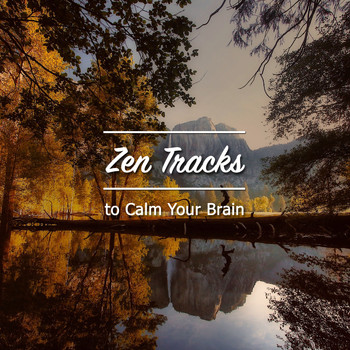 Relaxing Sleep Music, Music for Absolute Sleep, Relaxation Music Guru - 15 Zen Tracks to Calm your Brain