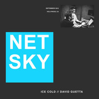 Netsky - Ice Cold