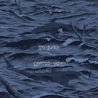 The Dodos - Certainty Waves