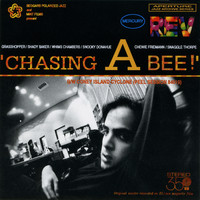 Mercury Rev - Chasing a Bee